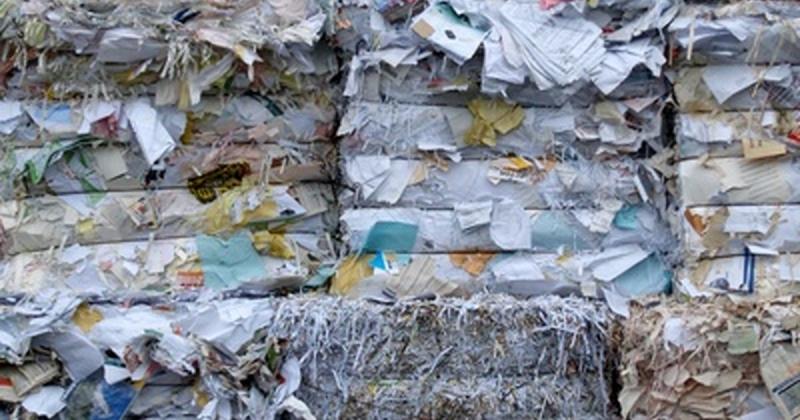 Gerenciamento de Transporte de Resíduos Não Perigosos Localização Jaçanã - Gerenciamento de Transporte de Resíduos Perigosos
