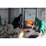 empresa de tratamento de resíduo por incineração Parque São Rafael