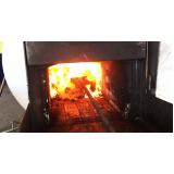 serviço de tratamento de resíduo por incineração Jardim Adhemar de Barros